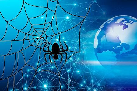 给蜘蛛提供快速通道